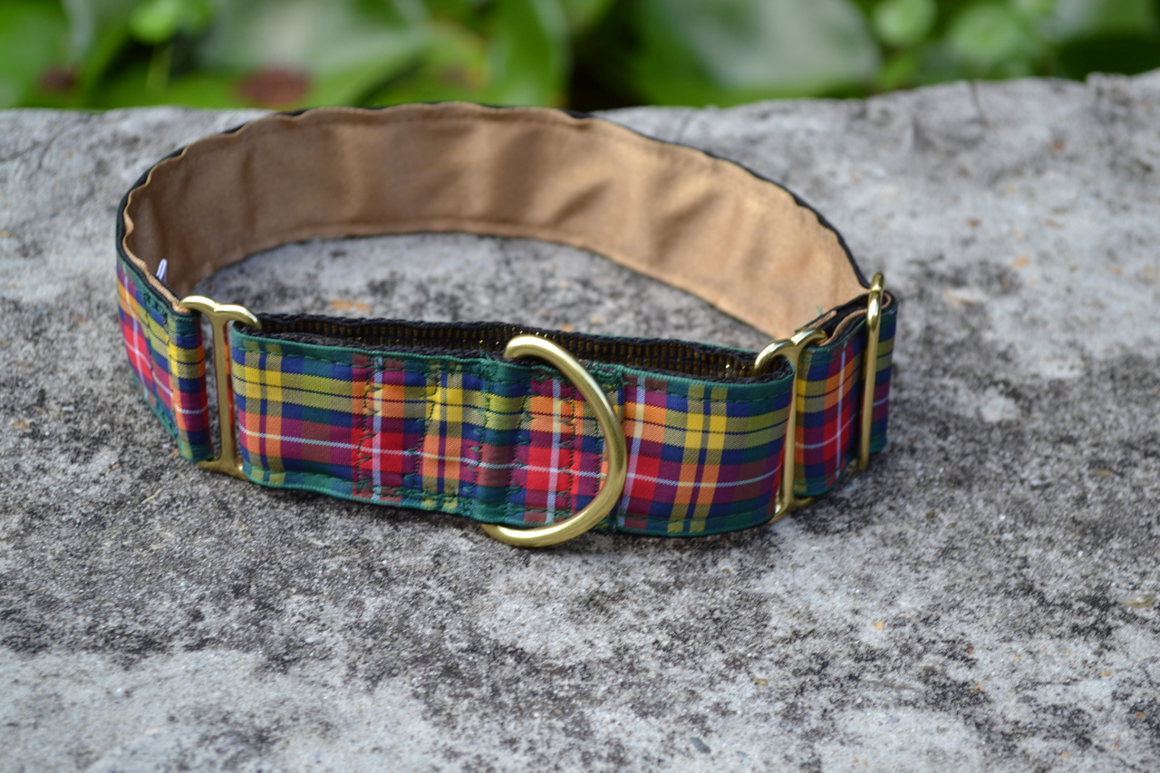 Buchanan 1.5 inch Collar