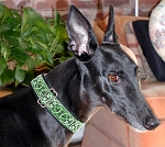 Celtic Green 1.5 inch Collar